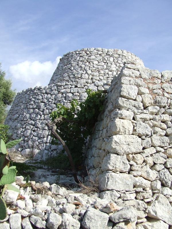 Pescoluse: dalle grotte preistoriche alle architetture rurali: caseddhi o pajare