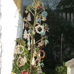 agave-di-natale