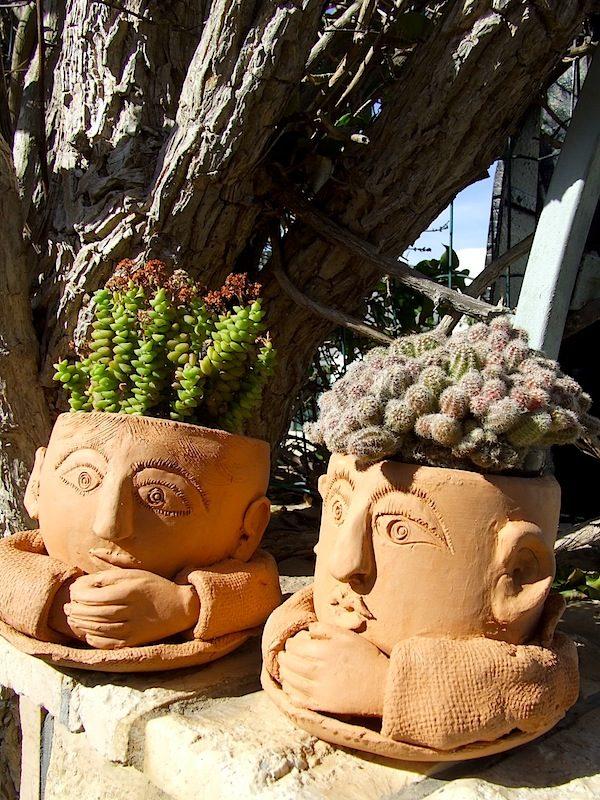 Nuovi vasi a primavera